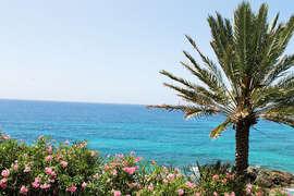 Beautiful and Serene Ocean Views