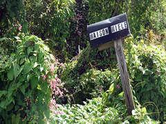 Maison Miele mailbox