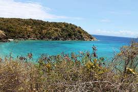 View Overlooking Kiddel Bay