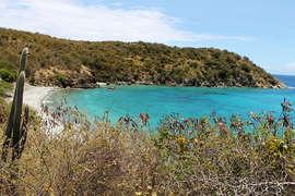 Short Walk to Beach at Kiddel Bay